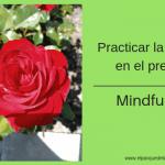 Lección 2 – Practicar la atención consciente en el presente